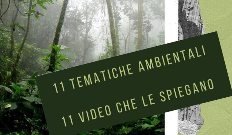 Settimana Laudato Si' - 11 video sulle problematiche ambientali